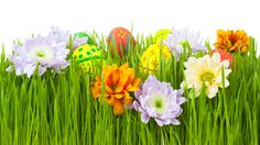 green flower background design - Cerca con Google