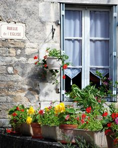 Country French window