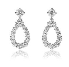 Harry Winston Loop Earrings