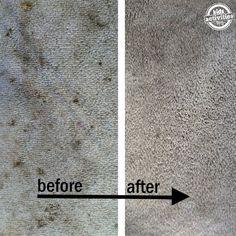 2 Ingredient Carpet Stain Cure - Kids Activities