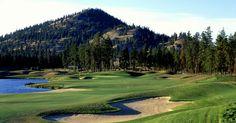 Okanagan Golf Club - The Bear - Kelowna, BC Canadian History, Wineries, Real Estate Marketing, Wedding Things, Golf Clubs, Golf Courses, Bear, Nature, Travel