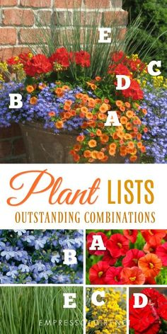 Container Gardening Ideas Plant lists for beautiful patio containers. Image by Proven Winners. - Want to know the secret to beautiful garden containers? These plant lists tell you exactly which plants you need to create these eye-catching planters. Container Flowers, Flower Planters, Container Plants, Flower Pots, Succulent Containers, Patio Plants, Outdoor Plants, Garden Plants, Flowering Plants