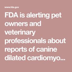 FDA is alerting pet owners and veterinary professionals about reports of canine dilated cardiomyopathy (DCM) in dogs eating certain pet foods containing peas, lentils, other legume seeds, or potatoes as main ingredients. Dilated Cardiomyopathy, Crate Bed, Dog Eating, Dog Show, Dog Days, Lentils, Dog Food Recipes, Seeds, Potatoes