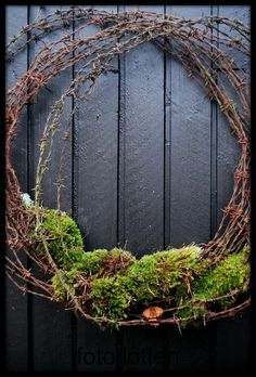 LOVE IT: Barbed wire and moss.