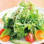 タワワ - 料理写真:季節の京野菜をたっぷり使い、大地の恵みが詰まったヘルシーサラダ700円