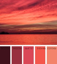 #RojoCarmesi #ColorPalette, unsplash photo sergio rola, crimson tide