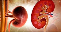 How to Detox Your Kidneys Naturally in 3 Days? Detox Plan to Revive Your Kidneys