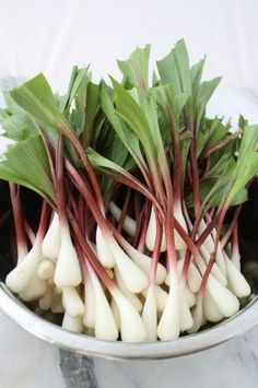 In a Pickle: Quick Pickled Ramps
