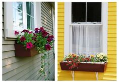 I love window boxes! Have them on our house and they are the most welcoming thing when you see our house! Love the wood ones!