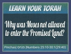 """Moses could not enter the land the L~rd gave the Children of Israel because of the sin of striking the rock twice at Kadesh (Meribah, """"strife""""). #LearnYourTorah #ItsAllAboutYeshua  """"For in the wilderness of Zin during the strife of the community, you both rebelled against My Word instead of honoring Me as holy at the waters before their eyes."""" (These were the waters of Meribah at Kadesh in the wilderness of Zin.) Numbers 27:14"""