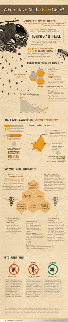 #Infographic [영문인포그래픽] Where Have All the Bees Gone?  copyrightⓒKobizmedia 무단복사-전재-재배포 금지