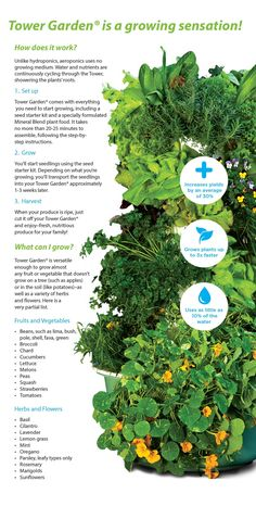 Join the movement and go green with the Juice Plus Tower Garden! Increase yield by 30 Grow plant &; Join the movement and go green with the Juice Plus Tower Garden! Increase yield by 30 Grow plant &; Go Green, Compost, Juice Plus Tower Garden, Grow Tower, Seed Starter Kit, Patio Diy, Vegetable Garden Design, Veg Garden, Garden Pool