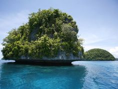On the list of places to visit before I die, the Palau islands are top 10! This incredible island chain boasts some of the most unique natural wonders in the world including a jelly fish filled lake!