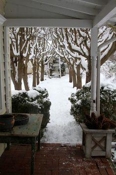 Love this Winter wonderland