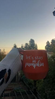 I love fall!!! #fall #pumpkin #pumpkinspice #coffee #coffeelover #mug #autumn Front Door Christmas Decorations, Pallet Christmas Tree, Diy Halloween Decorations, Rustic Christmas, Christmas Diy, Rainbow Baking, Bridal Shower Welcome Sign, Sunrise Photography, Welcome Fall