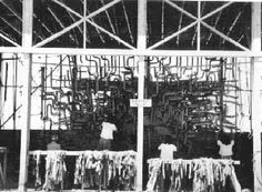 While incarcerated, Japanese-Americans helped in the war effort to protect Americans by making camouflage netting.  Photo of the camouflage net factory, Manzanar