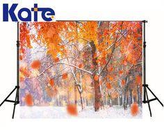 凯特照片红叶雪冻冰封森林风景漂亮