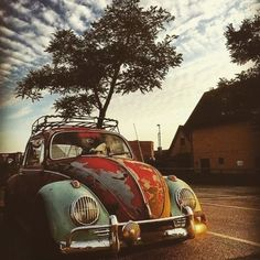 Beetle Bug, Vw Beetles, Volkswagen Bus, Vw Camper, Pet Dogs, Dogs And Puppies, Vintage Cars, Antique Cars, Fun Shots