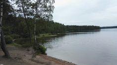 #omaisapu #järveltä #joutsenet #lake #swan #Finland