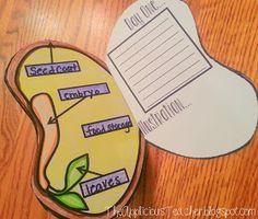 The Applicious Teacher: We're Sproutin'!