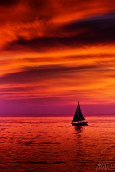 Fire in the sky ~ sailing in the sunset, Pacific Ocean, Los Angeles.