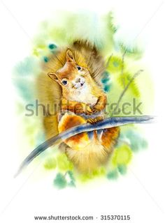 Squirrel on the branch. Sunny summer. Decoration with wildlife scene. Pattern from forest inhabitants. Watercolor hand drawn illustration