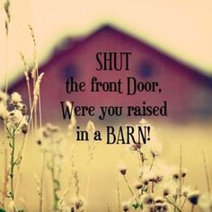 "LOL, our parent's were always saying this to us, except they didn't say the ""front door"", they just said ""shut the door, were you raised in a barn!""  