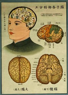vintage Chinese public health poster