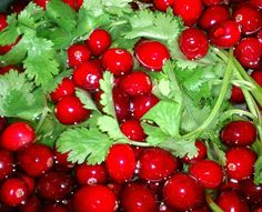 Cranberry Sauce with mango, cilantro, jalapeno, and goat cheese.  A delicious alternative to the canned stuff.