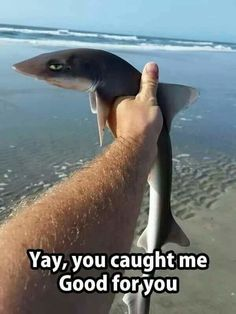 You caught me
