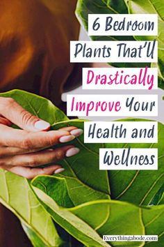 Health And Fitness Tips, Health Tips, Health And Wellness, Bedroom Plants, Indoor Plants, House Plants, Fun Facts, Healthy Lifestyle, Improve Yourself