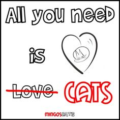 All You Need Is    #need #cats #gatos #gatetes #catslovers #catlover #love #amor #meow #miau