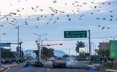 """""""Sinaloa"""" es TT para informar del reciente asesinato de 6 militares por entrar a reforzar la seguridad del estado. http://mexico.srtrendingtopic.com/trend/71/2016-10-02/2016-10-02/sinaloa.html"""
