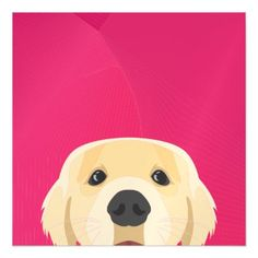 Illustration Golden Retriver with pink background Magnetic Card - invitations custom unique diy personalize occasions