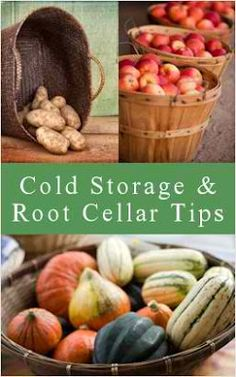DIY Cold Storage Ideas & Root Cellar Tips of Garden Crops... link for the list of How-to:   http://tipnut.com/cold-storage-projects/