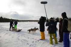 Filming a husky ride in winter in Finland A Husky, Travel Clothes Women, Travel Posters, Travel Style, Arctic, Finland, Cold Weather, Travel Inspiration, Survival