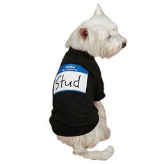 Casual Canine 'Hello My Name Is' Tee for Pets, Large, Black > Hurry! Check out this great product : Dog shirts