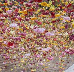Semaine Art Artist Rebecca Louise Law Floral Installation