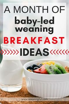baby led weaning breakfast recipes – WEANINGFUL Baby led weaning breakfast ideas – blw healthy breakfast recipes for introducing solids – great finger foods and first foods for 6 months, 9 months, 1 year old – toddler food and picky eaters food Baby Led Weaning Breakfast, Baby Led Weaning First Foods, Weaning Foods, Baby Breakfast, Baby First Foods, Baby Weaning, Baby Finger Foods, Blw Breakfast Ideas, 1 Year Old Breakfast