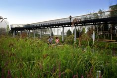 Qunli National Urban Wetland by Turenscape « Landscape Architecture Works | Landezine