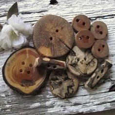Amazing Wooden Ohio Tree Branch Button Assortment
