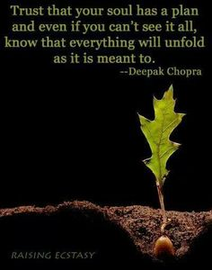 Trust that your Soul ahs a plan and even if you can't see it all, know that everything will unfold as it is meant to. Deepak Chopra