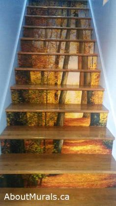 This autumn-inspired tree mural will warm you with it's sunshine landing on orange and yellow leaves. Surround yourself in the beauty of nature.