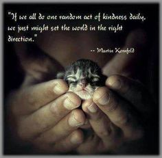 If we all did one act of random kindness daily, we might just set the world in the right direction ..