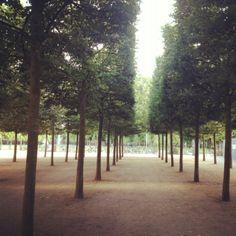 Naturlig skov?