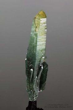 Quartz var. Prase crystal / Torre di Rio, Rio Marina, Elba Island, Livorno Province, Tuscany, Italy