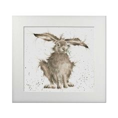 """Wrendal Designs Signed Print - Hare Picture """"Hare Brained"""": Amazon.co.uk: Kitchen & Home"""