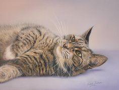 Кошка Галерея | www.janetpidoux.co.uk