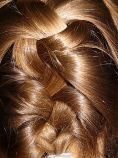 If you are having issues with your hair shedding or experiencing hair loss there are lots of natural remedies that you can use to help combat the issue. Plaits Hairstyles, Pretty Hairstyles, Braided Hairstyles, Braided Chignon, Beautiful Haircuts, Wedding Hairstyles, Hairstyle App, Hair Shedding, Hair Remedies