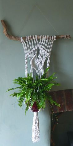 OMG gorgeous driftwood macrame wall hanging plant hanger. Love it for the living room! https://www.etsy.com/uk/listing/289867021/driftwood-macrame-plant-hanger